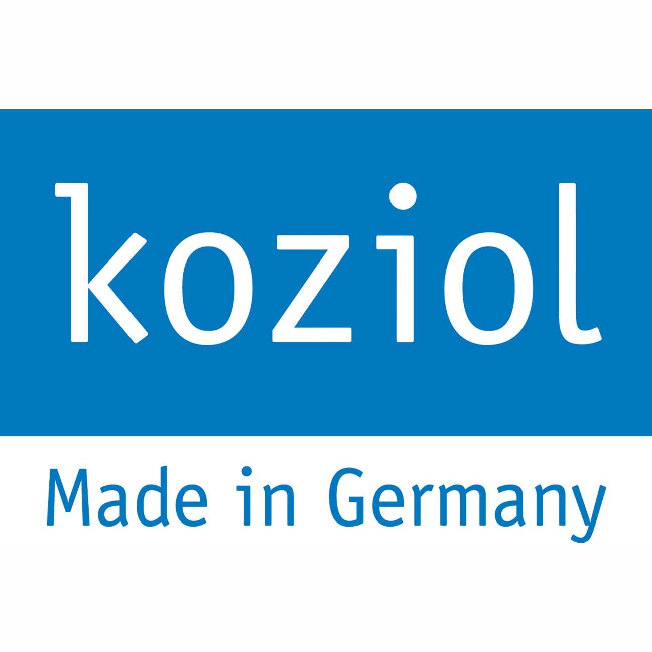 Logo Koziol